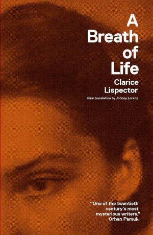 Image result for clarice lispector new directions