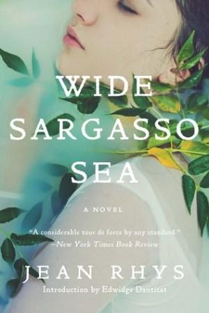 Image result for wide sargasso sea book