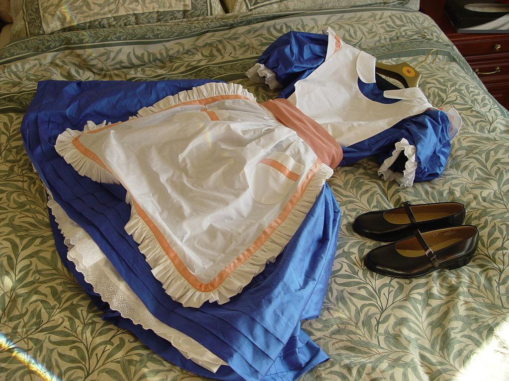 Empty Alice in Wonderland dress
