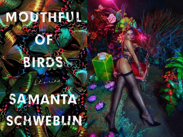 "Samanta Schweblin's ""Mouthful of Birds,"" with a background of jewel-toned butterfly wings, and Rihanna in lingerie on a tropical background in similar colors"