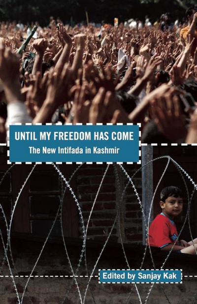 Image result for kashmir we want freedom
