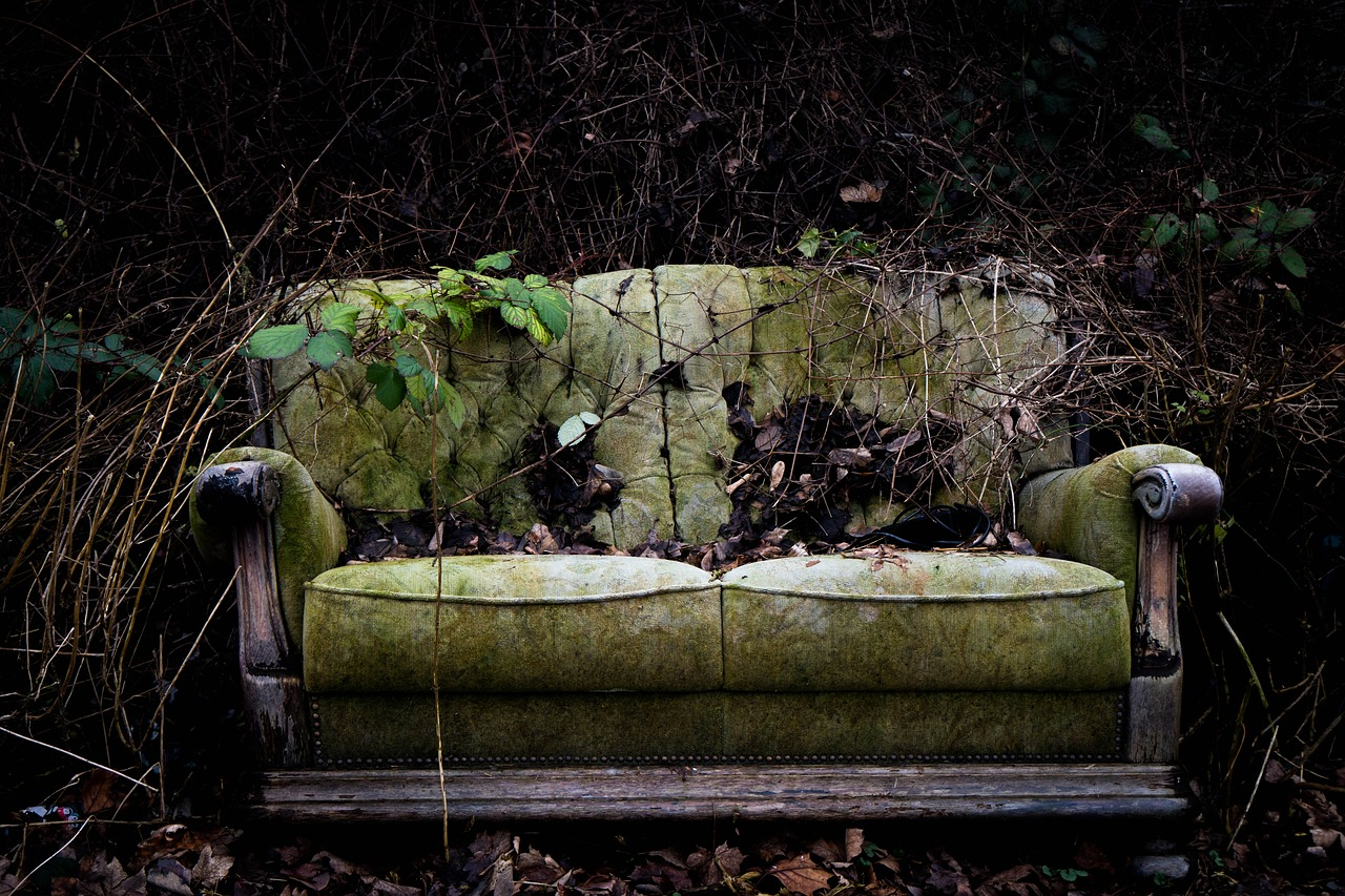 Sofa covered in leaves and dirt