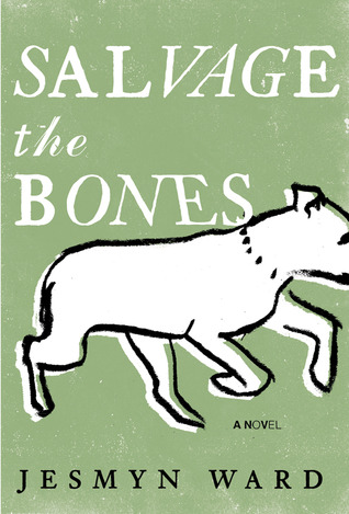 Image result for salvage the bones book