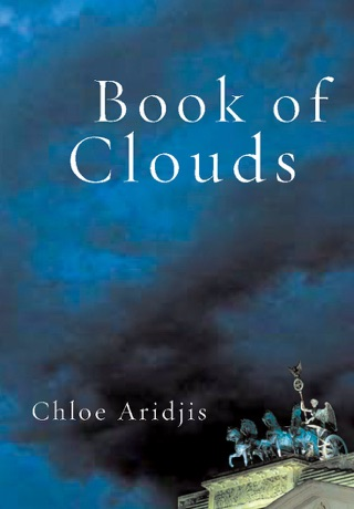Image result for book of clouds chloe aridjis