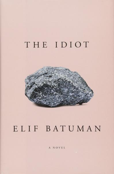 Image result for elif batuman the idiot