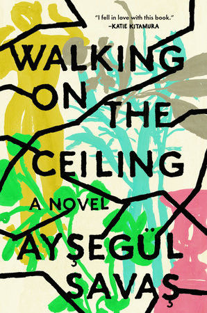 Walking on the Ceiling by Aysegül Savas