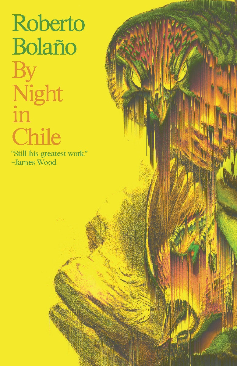 Image result for roberto bolano by night in chile