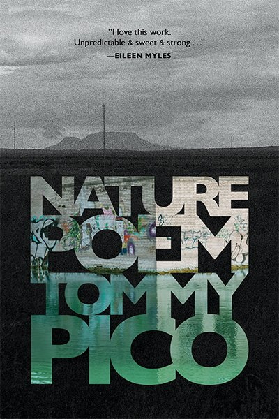 Image result for nature poem tommy pico