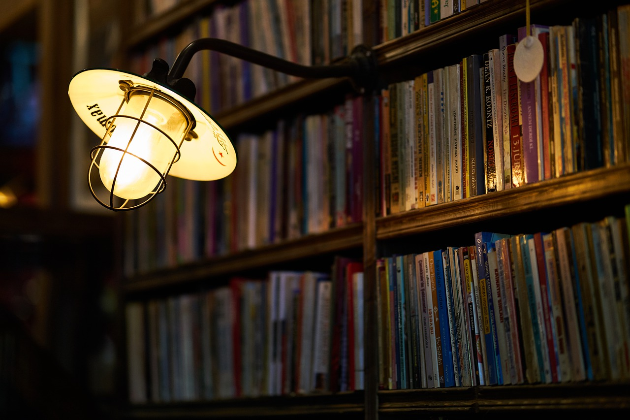 Bookshelf light