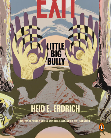 Little Big Bully by Heid E. Erdrich