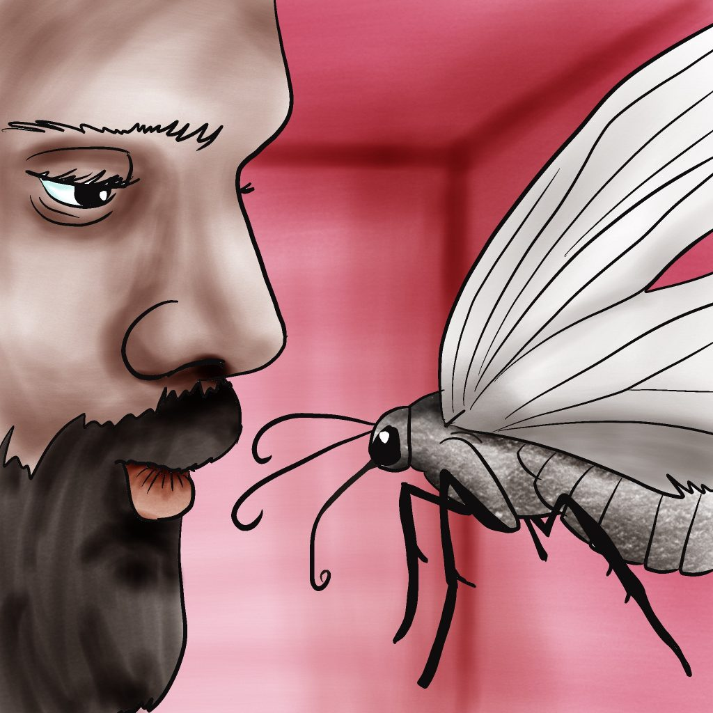 Man with dark skin and beard making a kissy face at a large fly