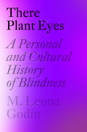 A Personal and Cultural History of Blindness by M. Leona Godin